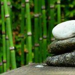 asiatischer Gartenteich mit Schilfpflanzen
